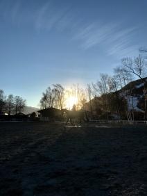 Foto 23.03.19, 17 42 59